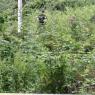 U šumi kod Žepča pronađeno tijelo muškarca čiji je nestanak ranije prijavljen